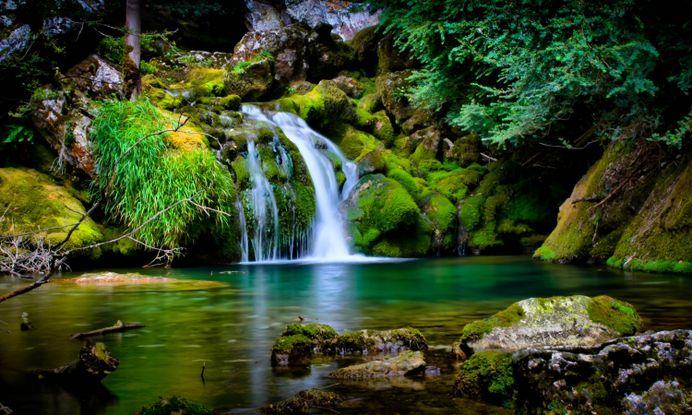 Forest Waterfall Nice Best Hd Wallpapers For Desktop – WallpapersBae