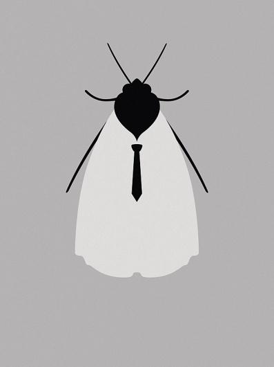 All sizes | Moth | Flickr - Photo Sharing! #vector #bug #illustration #fire #horizon #animal