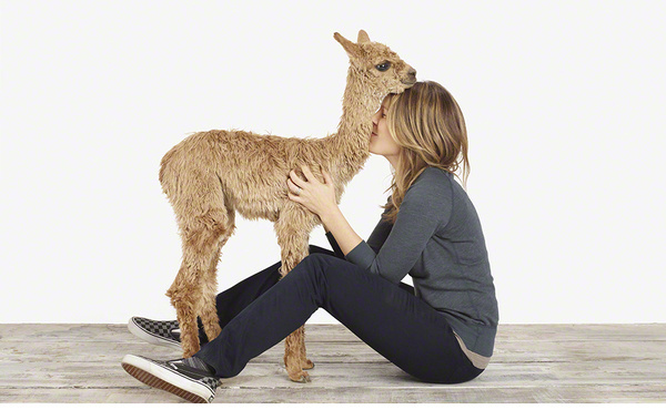 About Our Site #alpaca #animal #woman #love