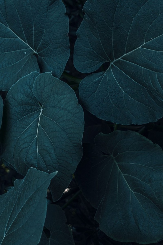 Colorful and Texture Photography by Xuebing DU