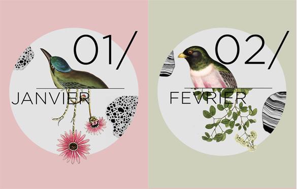 illustration, typography