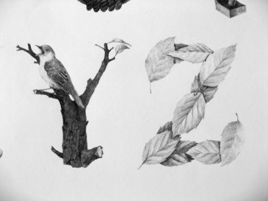 May #illustrated #konvica #by #jakub #type