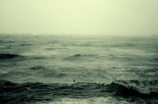safe. on Flickr Large #ocean #sea #waves