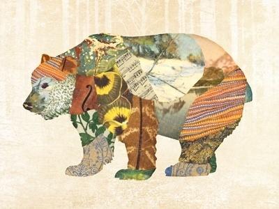 Dribbble - bear by Gerren Lamson #bear #illustration #collage