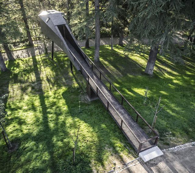treesnakehouse-5 #architecture #house #tree
