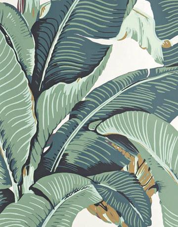 Leaves #illustration #hand #leaves