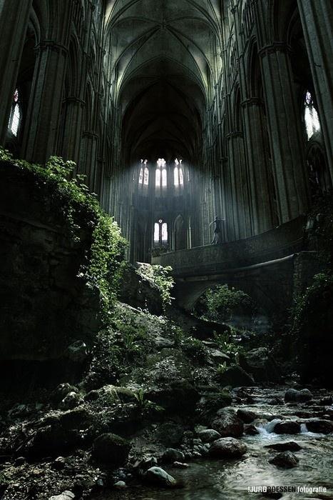 I fucking wish #forest #gothic