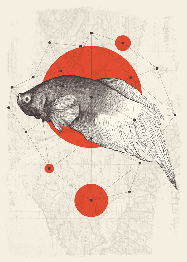 four points #lines #red #fish #map #dots