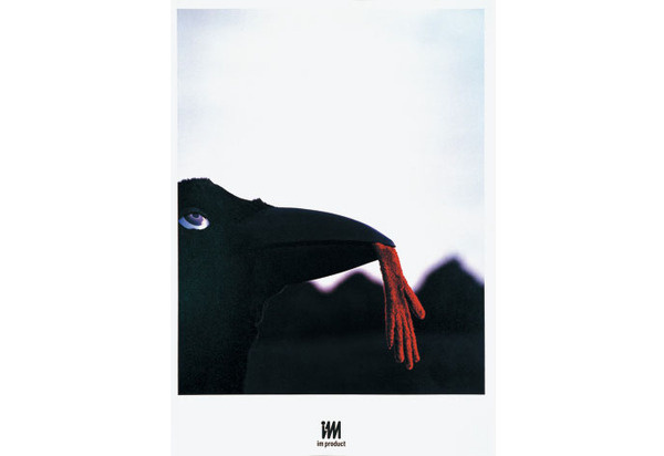 Don't Talk about Colors | WORKS | HARA DESIGN INSTITUTE #japanese #book #bird #photography #fashion