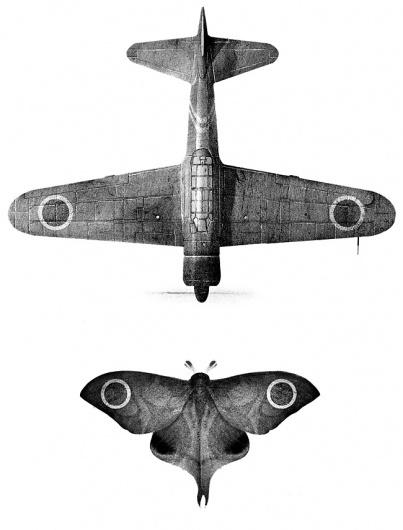 Yamamoto   Sam Weber #moth #illustration #airplane
