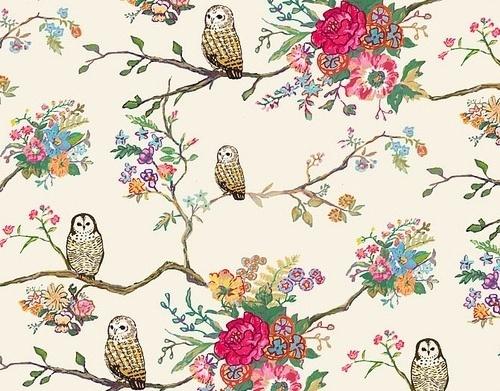 coqueterías #pattern #floral #owls