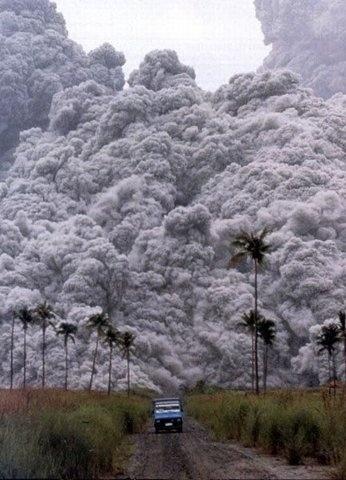 FFFFOUND! #photography #volcano #tree #palm