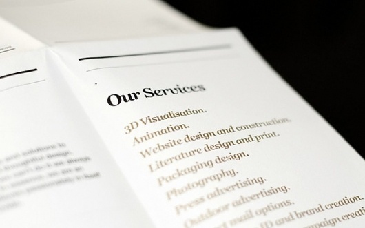 Promo Mailer 2010 on the Behance Network #print #design #graphic #poster