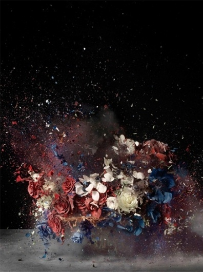 but does it float #photo #explosion #photography #flowers
