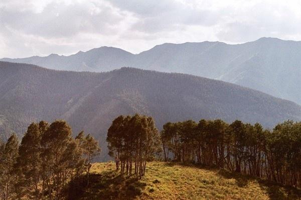 http://trevortriano.com/files/gimgs/th-16_16_aspen_v2.jpg #analog #trevor #triano #colorado #summer #aspen #mountains #trees