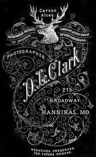 Typography /