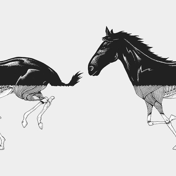 Horse by estudioself #ink #horse #zombie #illustration #dead #bones #drawing