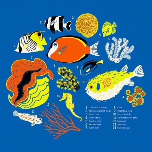 Reef t-shirt by ~chibighibli on deviantART #water #lllustration #fish #color #sea