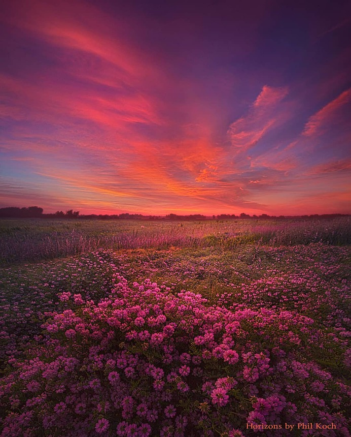 Amazing Wheather and Landscape Photography by Phil Koch