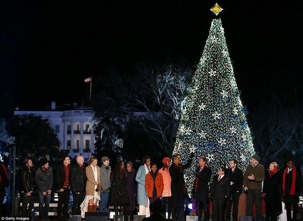 18 Christmas tree on White house #christmas #trees #art #tree