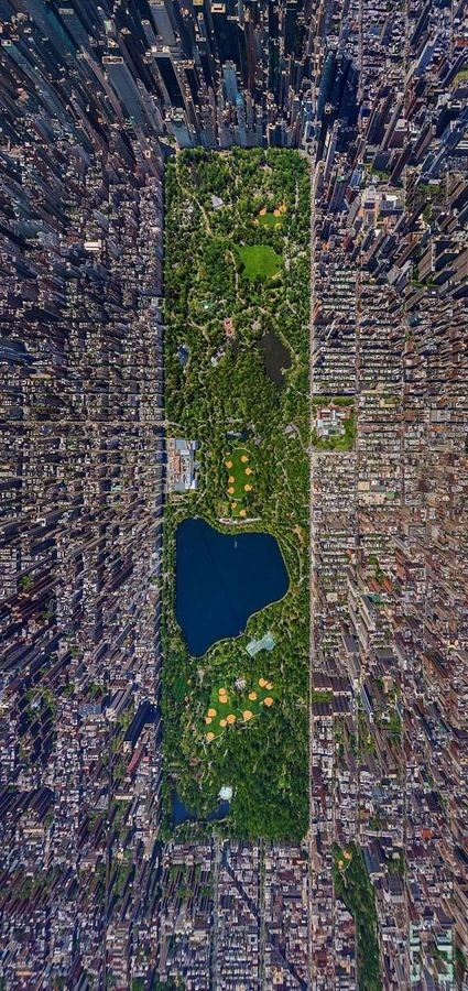Aerial Photography: New York City Wall to Watch #new york #photography #aerial #city #forest #buildings #park #central park