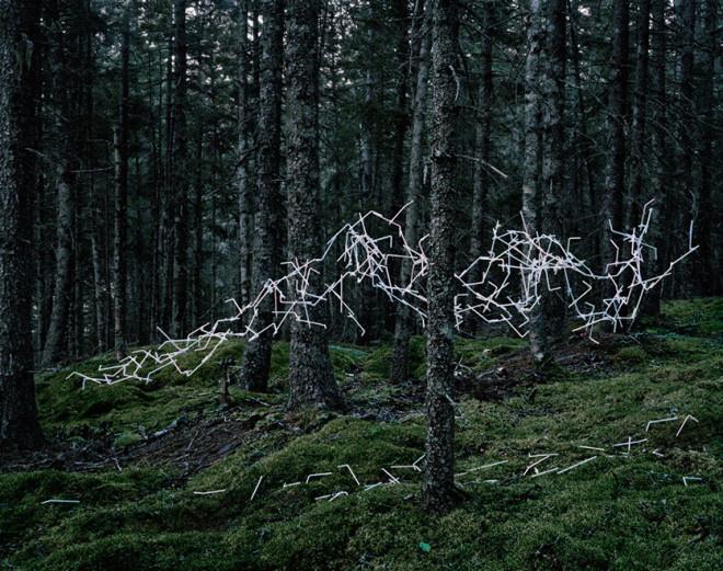 Emergent Behavior by Thomas Jackson #inspiration #photography #art
