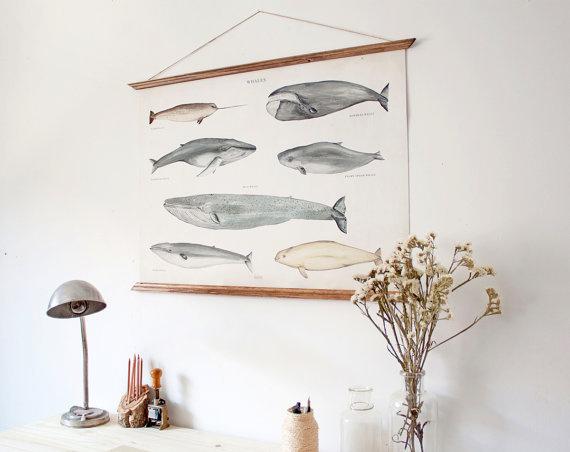 LARGE A1 Whales Canvas poster vintage illustration door ARMINHO #whale #illustration #etsy