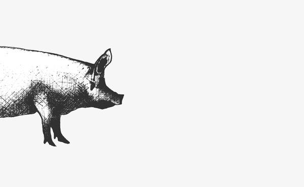 R&Co. Local 215 Pig #mark #illustration #symbol #logo #drawing #sketch