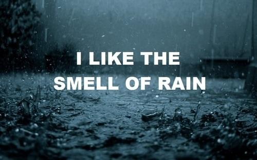 tumblr_l8ng1vwwoT1qby9fbo1_500.jpg 500 × 312 Pixel #movie #picture #cold #rain #type #still #typography