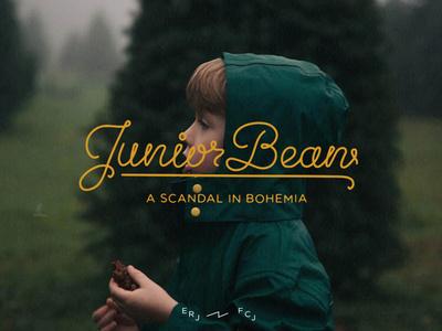 JuniorBean #scrirpt