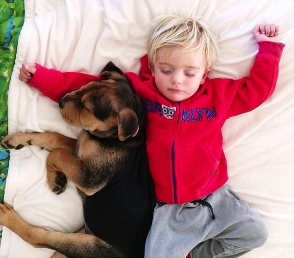 A Naptime Story with Dog and Baby 4 #photography #baby #dog