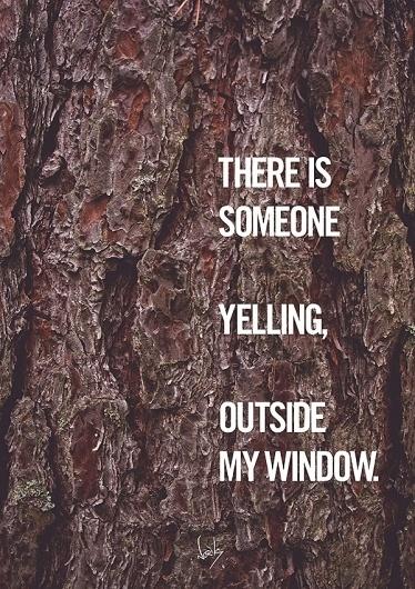 Typcut #typcut #norik #photography #yelling #typography