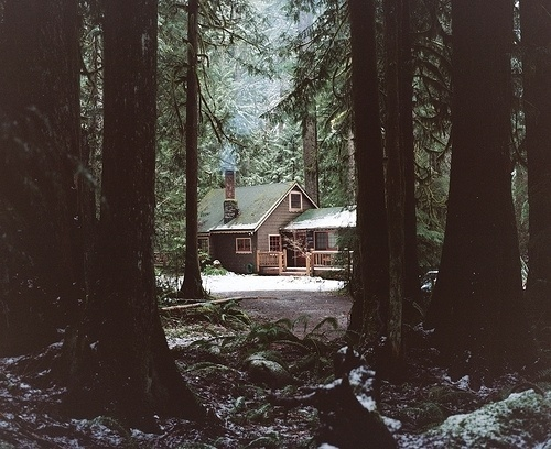 Allie Mount — There was rain #cabin #forest #woods #house