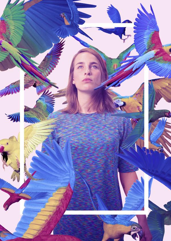 Queens on Behance by Quentin Deronzier #tropical #deronzier #photo #birds #colors #parrot #quentin