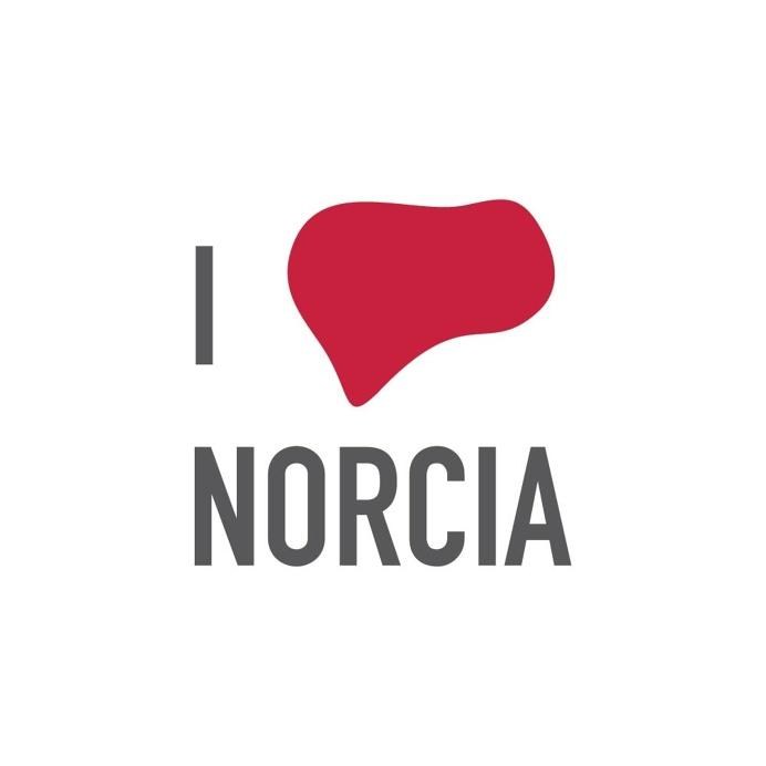 A wish and a little help, for my Norcia that will rise again … #ilovenorcia #norcia #iloveny #danieleliberti #valnerina #umbria #perugia