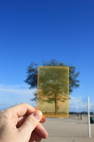 Google Image Result for http://cdn.shopify.com/s/files/1/0089/0382/products/goldensectioncard_tree_large.jpg%3F2927 #section #golden