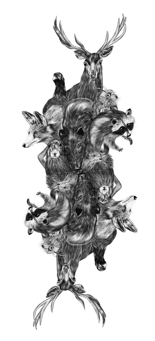 Deep forest on Behance #deer #owl #fox #wood #illustration #animals #rabbit #drawing