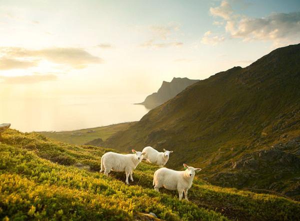 Landscape Photography by Caterina Bernardi #inspiration #photography #landscape
