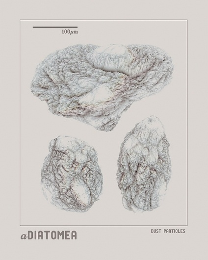 aDiatomea: Digitally Engineered Living Systems on the Behance Network #diatomea #small #poster #dust