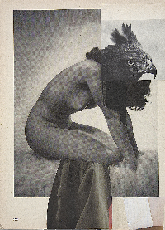 nuncalosabre. Collages | ©Charles Wilkin #juxtaposition #nude #illustration #strange #eagle #art #odd #collage #weird