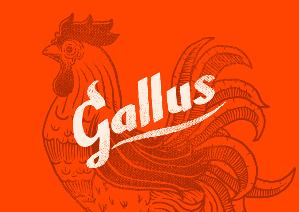 Monodois   Logofolio 2012/2013 on Behance #logotype #branding #lettering #rustic #restaurant #rooster #buffalo wings #fried chicken