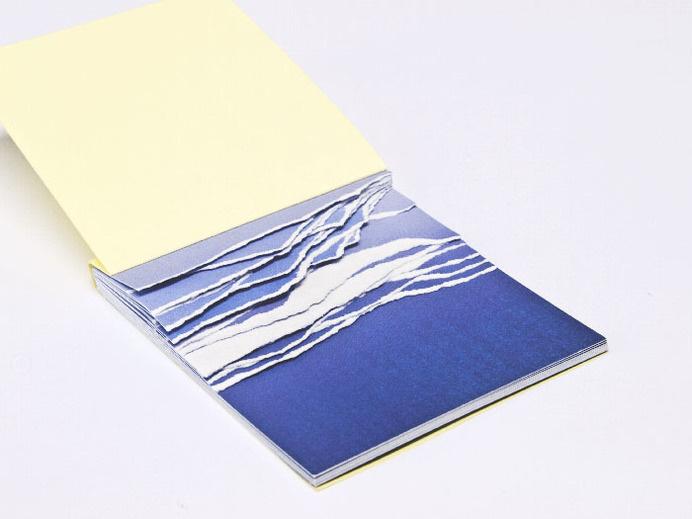 Maxime Gambus #art #livre #blue