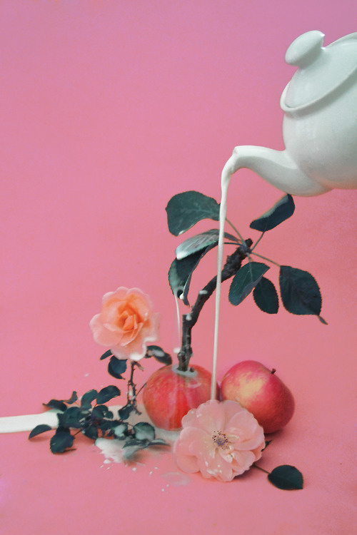domsebastian: magic apple plant #milk #apple #pour #pink #flower #grow #photography #teapot #surreal #plant