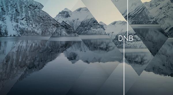 DNB on Behance #identity