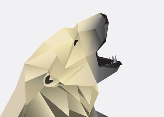 Great Bears | rorymuldoon.com #bear #illustration #cards