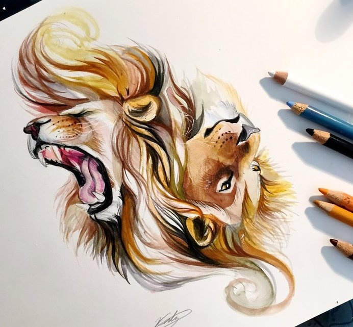 Colored Pencil Drawing Art By Search By Muzli