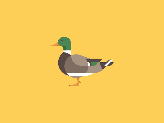 Duck Illustration by Makers Company #illustration #duck #icon #iconic #bird #animal
