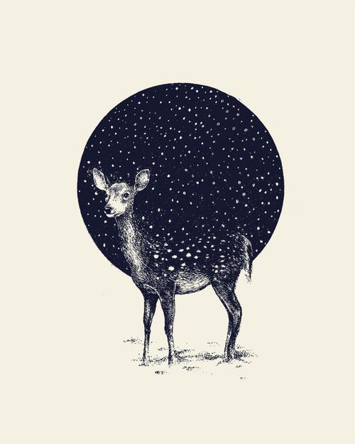 """Snow Flake""illustration by Daniel Teixeira on behance"