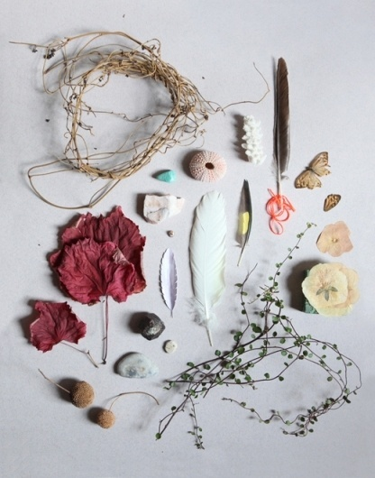Guest Blog – The Design Files #everett #backyard #luci #feathers #photography #collect #organic #flowers