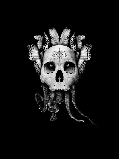 Martin Johansson #illustration #dark #skull